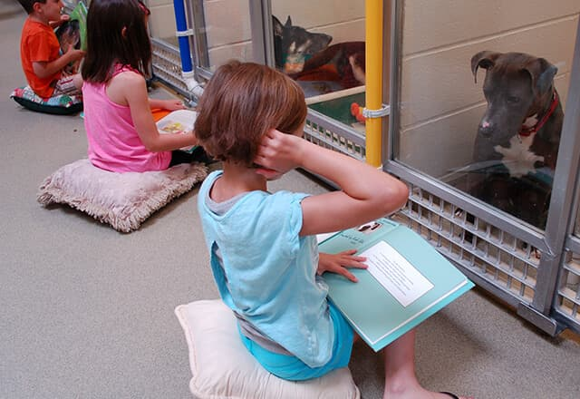 Children reading to dogs